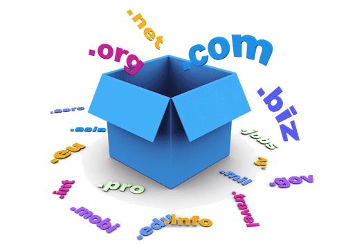 Domain Név Választása