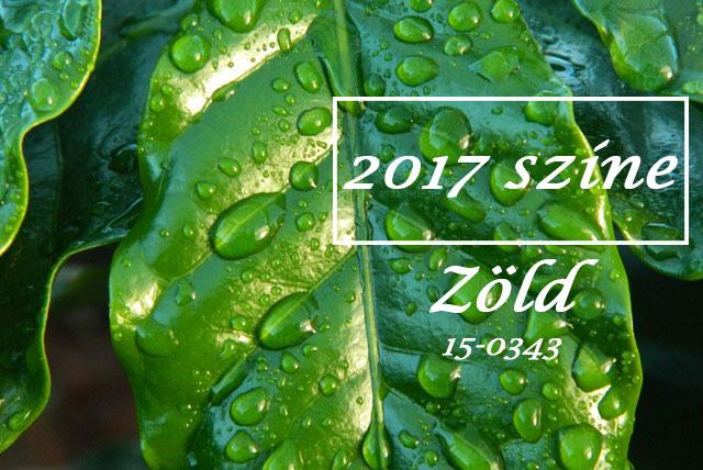 2017. év színe a zöld! Használjuk weblap készítés esetén is